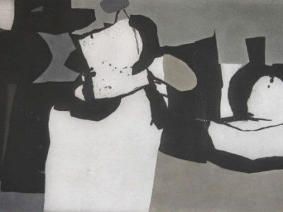 Il grande grigio, 1974